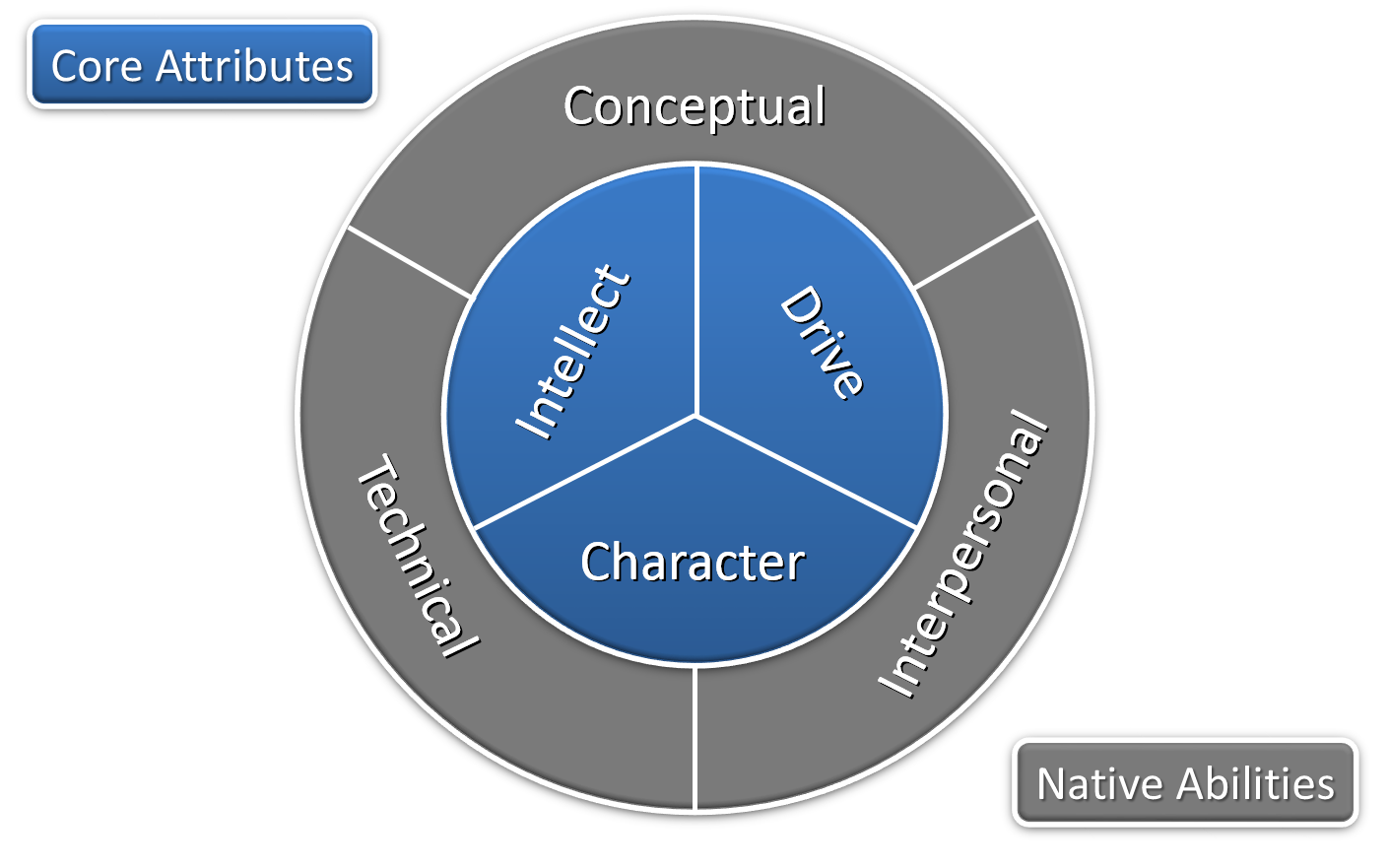 The Whole Consultant Model